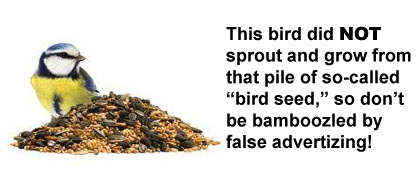 This bird did NOT